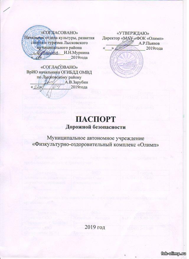 Паспорт дорожной безопасности